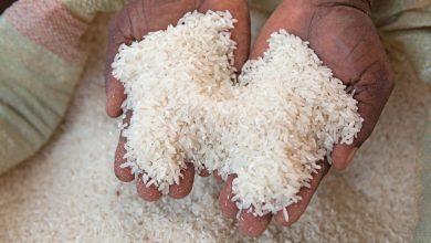 Tanzania Rice