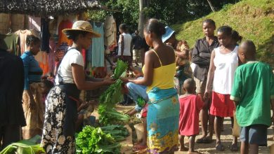 Photo of Rich in agriculture, Madagascar suffers from extreme malnutrition