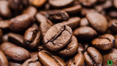 Photo of Coffee production faces climate risk for Africa's top grower