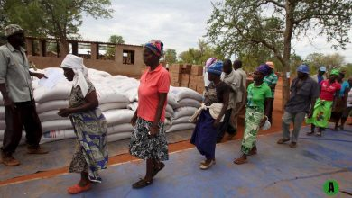 WFP, USAID Food