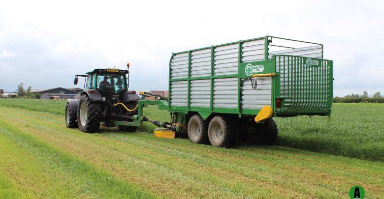 Grass Technology