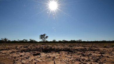Photo of Climate change and Southern African drought