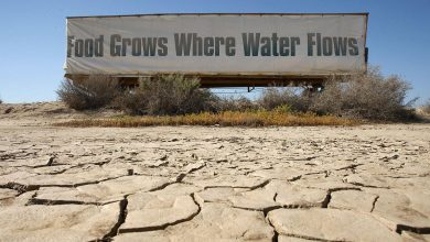 Photo of N$573 million drought war chest announced