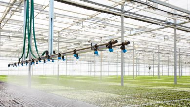 Photo of Sales of fertigation control systems to pick pace, as adoption of controlled environment agriculture increases
