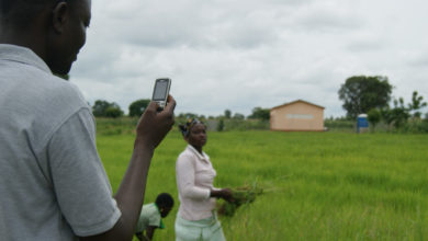 Photo of Satellite data brings farming advice to remote areas of Zimbabwe