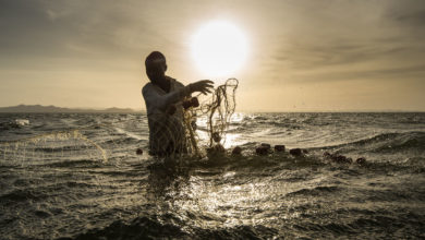 Photo of Coronavirus provides unexpected boost for Kenyan fishermen